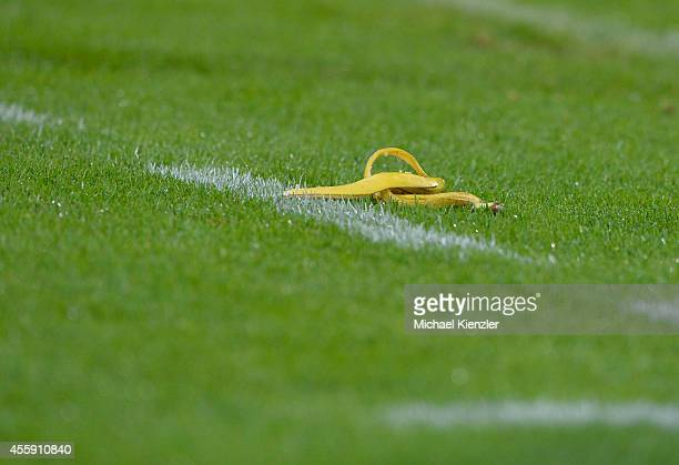 A supporter throws a Banana Peel on pitch during the Bundesliga match between SC Freiburg and Hertha BSC at Mage Solar Stadium on September 19 2014...
