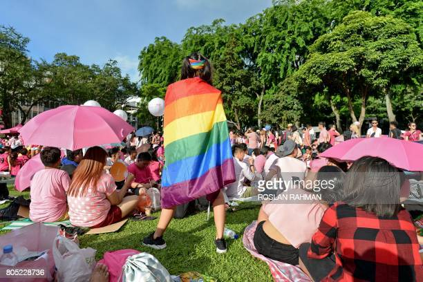 A supporter wrapped in a rainbow flag attends the annual 'Pink Dot' event in a public show of support for the LGBT community at Hong Lim Park in...