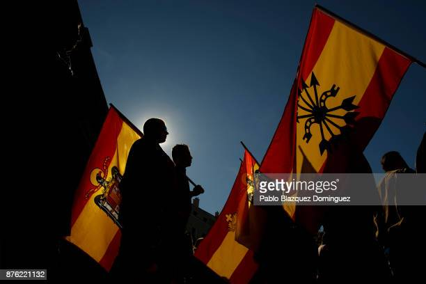 Supporters of Franco hold preconstitutional Spanish flags during a rally commemorating the 42nd anniversary of Spain's former dictator General...