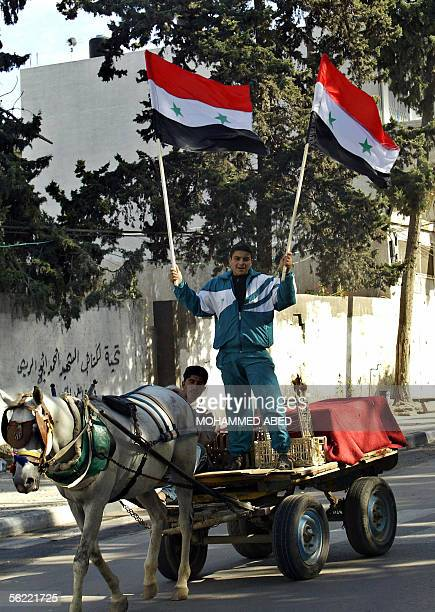 Supporters of Palestinian movement Islamic Jihad hold up Syrian flags while riding a horse in cart near a demonstration in Gaza City 18 November 2005...