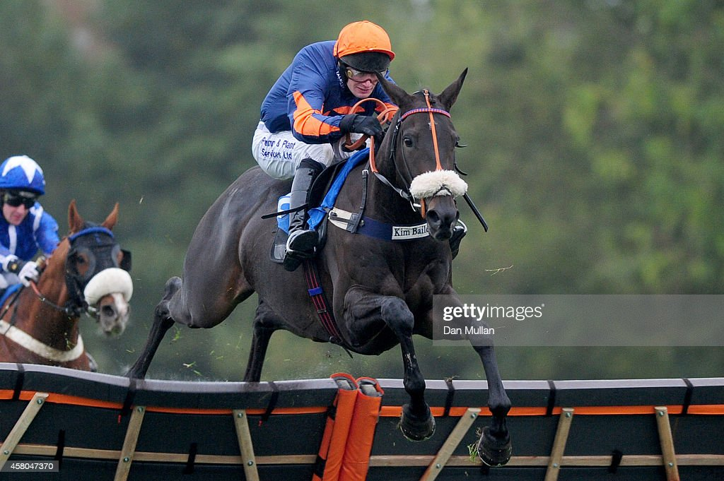 Supreme Present ridden by David Bass clear the last to win the Weatherbys Stallion Book Novices' Hurdle Race at Taunton Racecourse on October 29 2014...