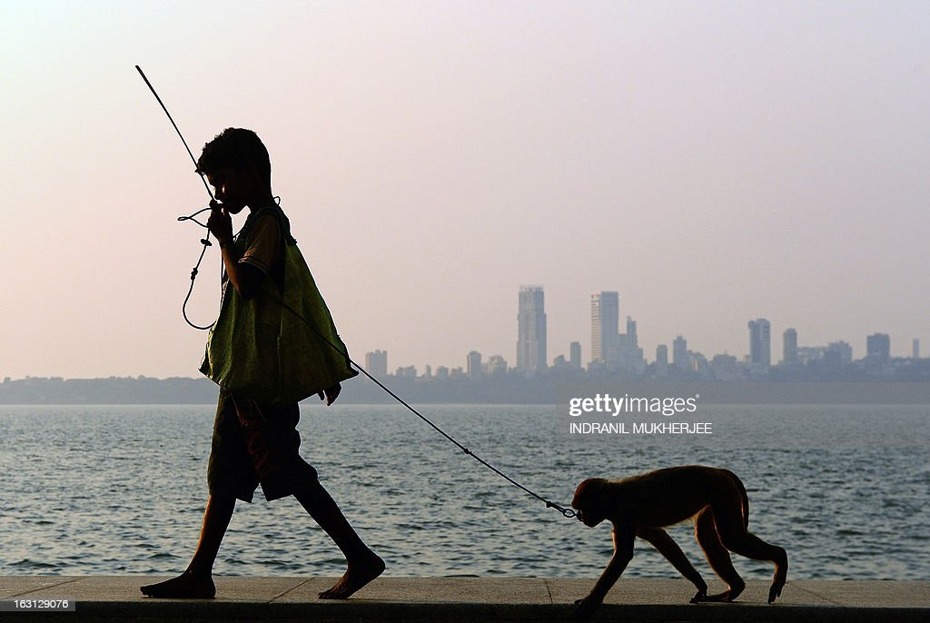 Suraj, 11, walks with his pet monkey towards a group of tourists to start a show on the Marine Drive promenade, which overlooks the Arabian Sea, in Mumbai on March 5, 2013. Suraj earns around 110 rupees (USD 2) by putting up shows and acrobatic performances of his monkey for tourists. AFP PHOTO/ INDRANIL MUKHERJEE