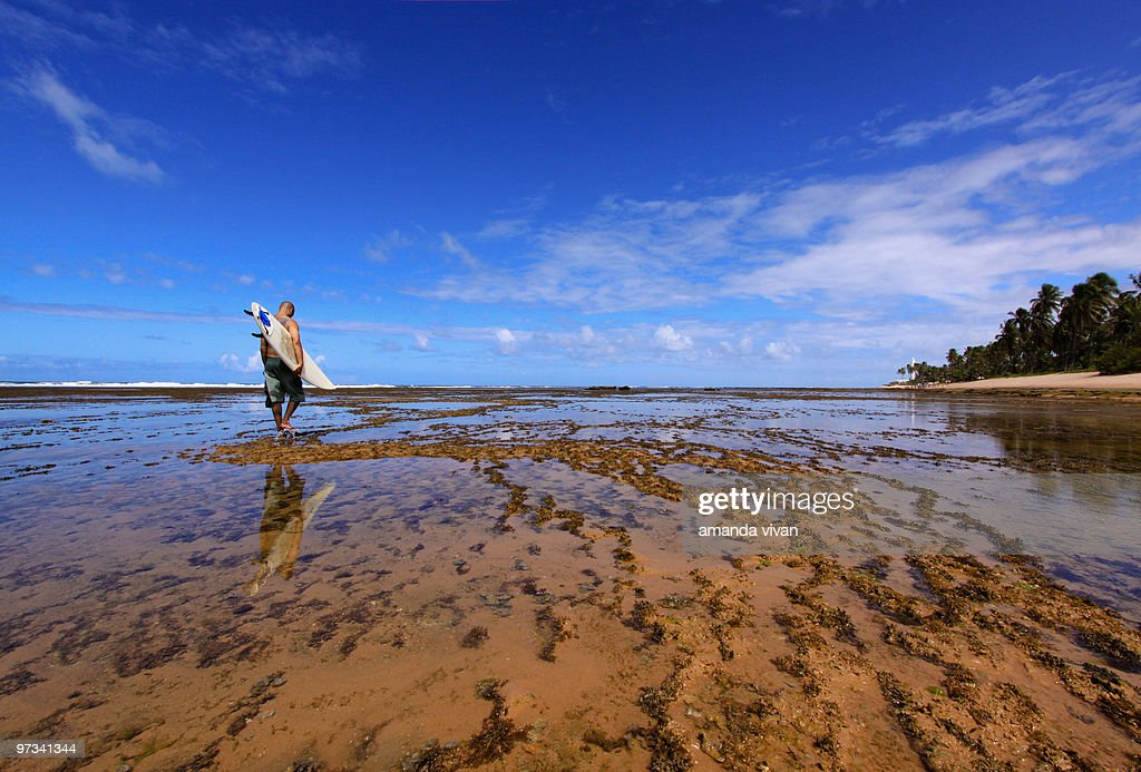 Surf in paradise : Stock Photo