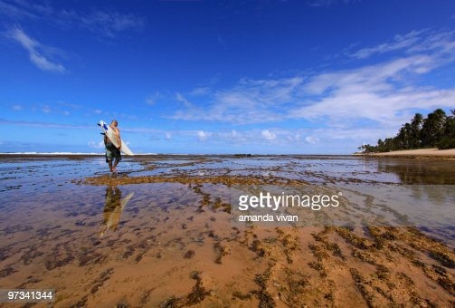 Surf in paradise : Stockfoto