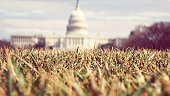 Surface Level Of Grassy Field Against Capitol Building
