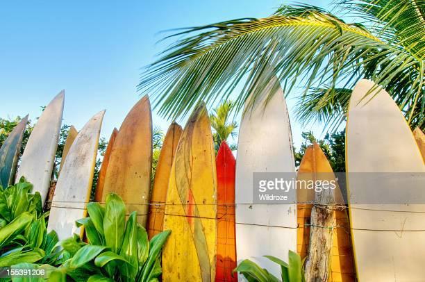 Surfboard fence lit by sunrise