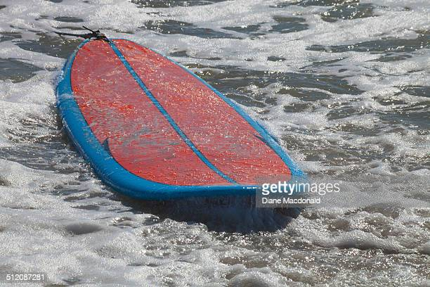 A surfboard floating ashore