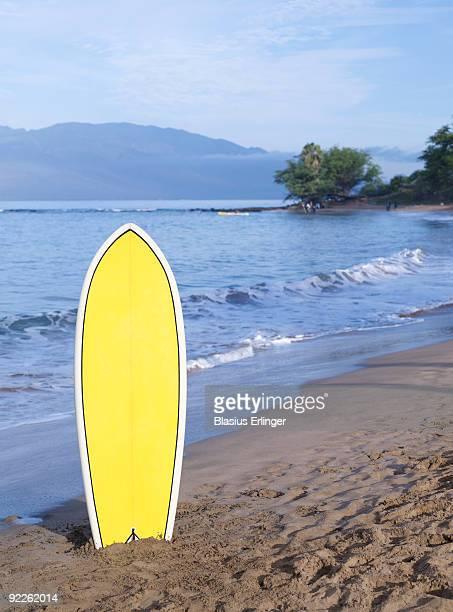 Surfboard In Sand