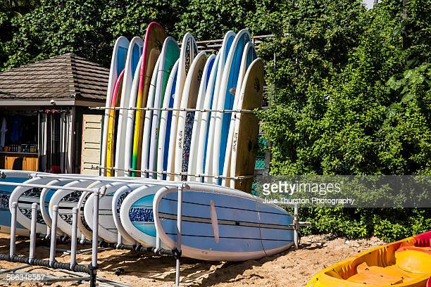 Surfboards and kayaks locked up for rentals or to use for surf lessons at the tourist travel destination surfing spot along the palm tree lined...