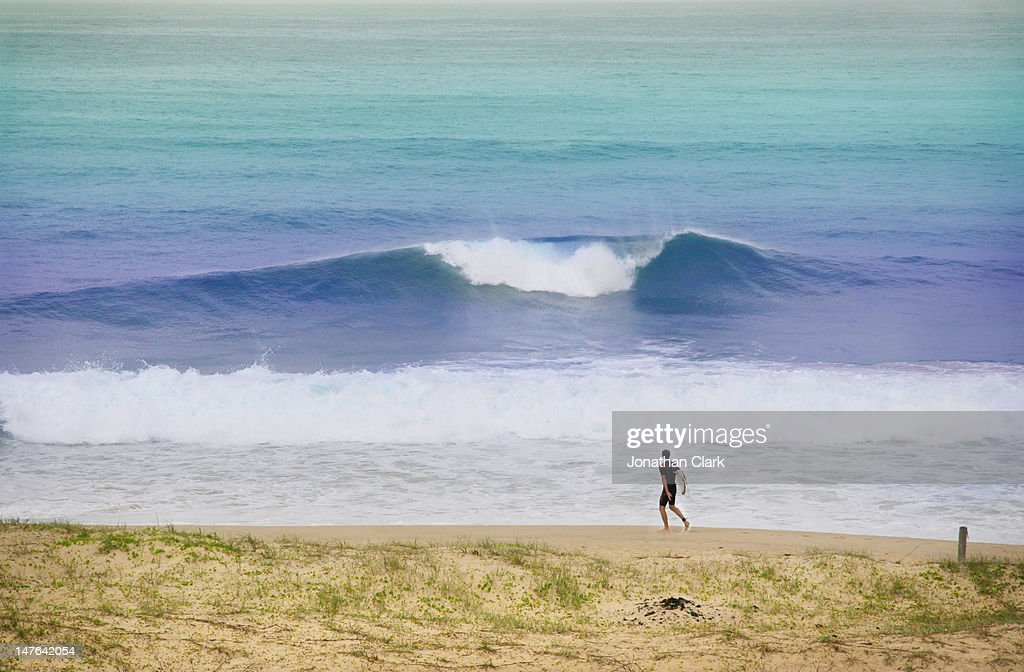 Surfer at St Catherines bay : Stock Photo