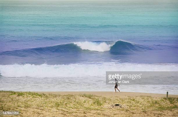 Surfer at St Catherines bay