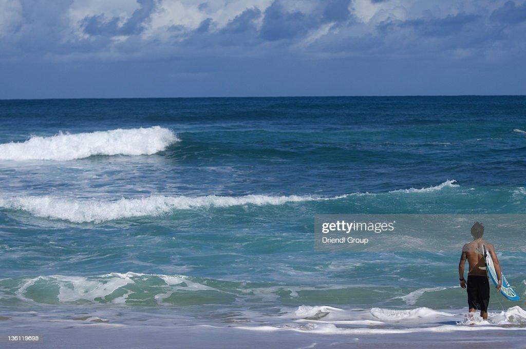 Surfer entering the ocean. : Stock Photo