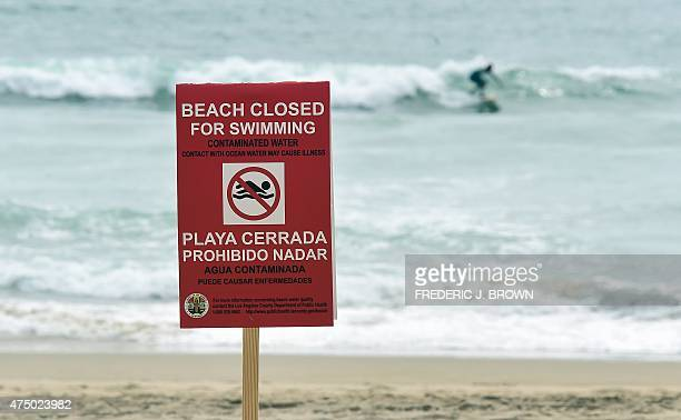 A surfer ignores the warning to stay out of the water at Manhattan Beach California on May 28 2015 as much of coastline south of Los Angeles was...