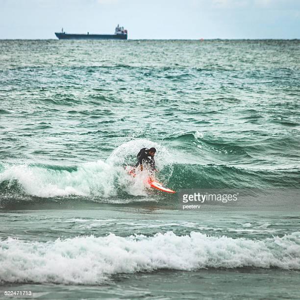 Surfer en action.