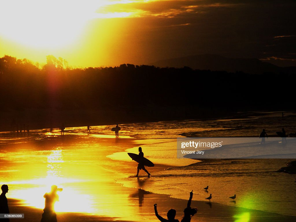 Surfer paradise