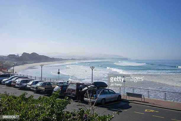 A surfer prepares for the surf at St Clair beach Dunedin New Zealand August 31 2014