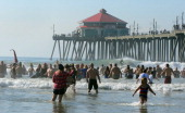 A surfer rides a wave beside Huntington Beach pier as participants at the annual Pier Plaza Plunge spend some time in the chilly waters of the...