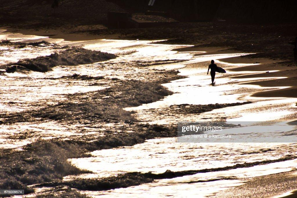 A surfer walking on the sunset beach : ストックフォト