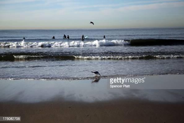 Surfers and birds visit the waterfront in the morning light along Rockaway Beach on July 31 2013 in the Queens borough of New York City Despite the...