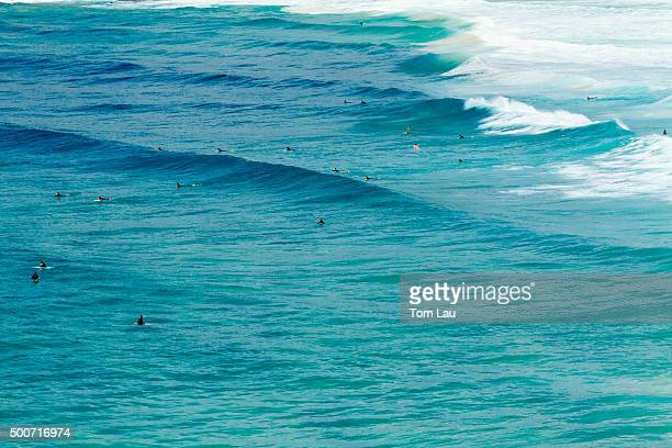 Surfers at Bondi Beach, Sydney, Australia