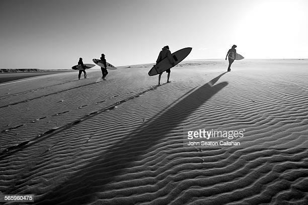 Surfers in the Sahara Desert