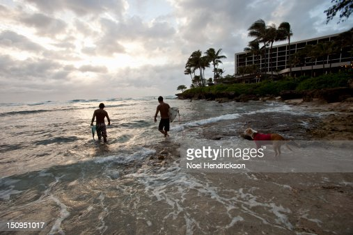 Surfers make their way out into the ocean : Stock Photo
