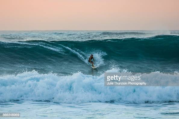 Surfers on surfboards ride monster teal waves under a peaceful peach orange sky at Sunset Beach a famous tourist travel destination surf spot on the...