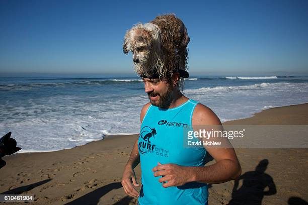 A surfing dog has a high a perch atop a human's head at the Surf Dog Competition at the 8th annual Petco Surf City Surf Dog event on September 25...