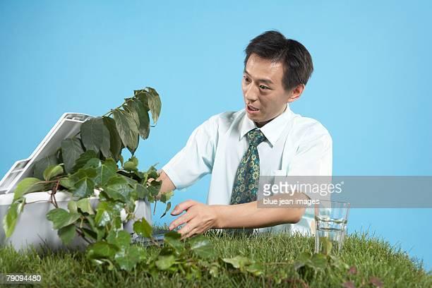 Surprised businessman scanning a trailing plant on a grassy desk.