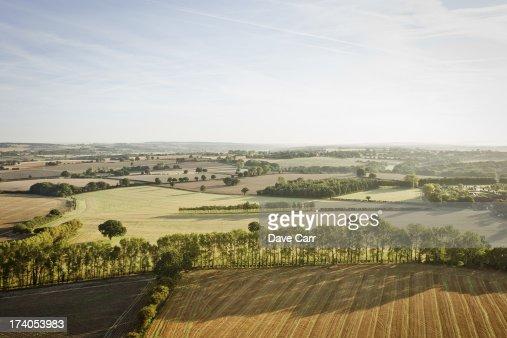 Surrey View