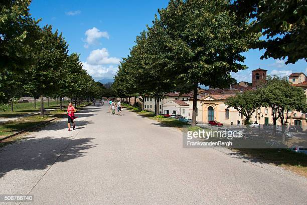 Lucca stock photos and pictures getty images - Porta san donato ...