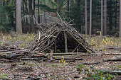 overview of survival shelter in forest