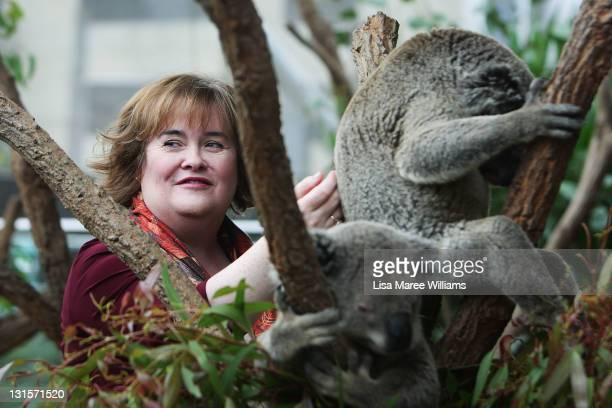 Susan Boyle poses during a visit to WILD LIFE Sydney on November 6 2011 in Sydney Australia This is Susan's first visit to Australia