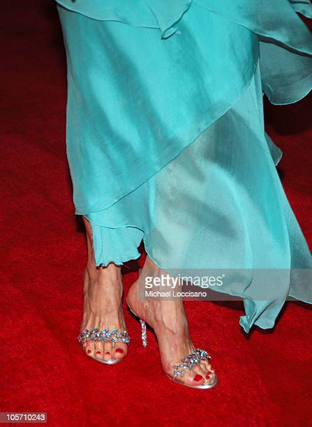 Susan Lucci's Shoes during American Women in Radio Television's 30th Annual Gracie Allen Awards at The Marriott Marquis in New York City New York...
