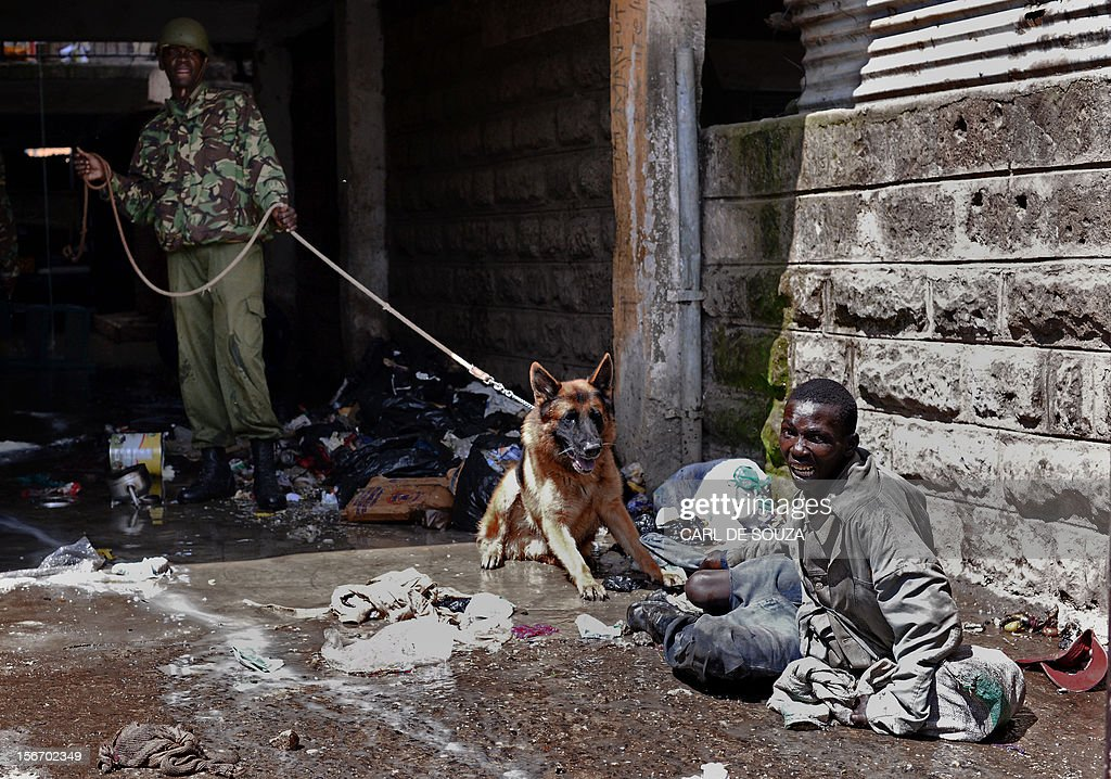 A suspected looter is restrained by a policeman with a dog in the somali district of Eastleigh in Nairobi on November 19, 2012. Police used tear gas and fired into the air to contain the violence which erupted after a bomb exploded in Eastleigh on November 18 2012 killing seven people and wounding many more. Kenyan residents in Eastleigh turned on Somalis and attacked their shops and stalls, accusing them of being responsible for the bomb.