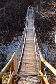 River, Forest, Woodland, Elevated Walkway, Julian Alps