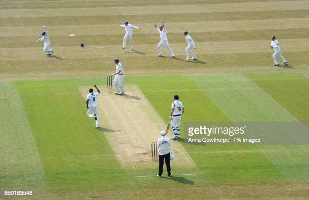 Sussex players celebrate as Yorkshire's Andrew Gale is caught behind by Sussex's Ben Brown during the LV=County Championship Division One match at...