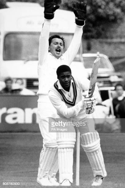 Sussex wicketkeeper Ian Gould appeals as West Indies Gus Logie is stopped at his crease lbw