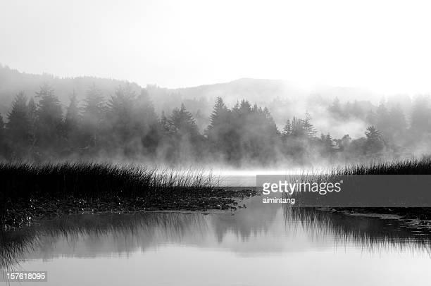 Sutton Lake