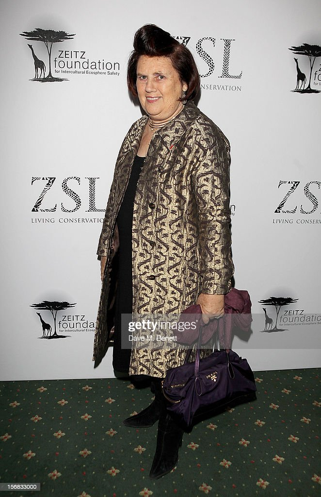 Suzy Menkes arrives at the Zeitz Foundation and ZSL Gala at London Zoo on November 22, 2012 in London, England.