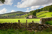 View over a stone wall towards the Swaledale village of Gunnerside. The Yorkshire Dales, England.