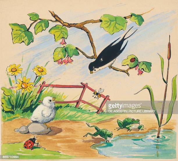 A swallow and a chick at a pond with frogs children's illustration drawing