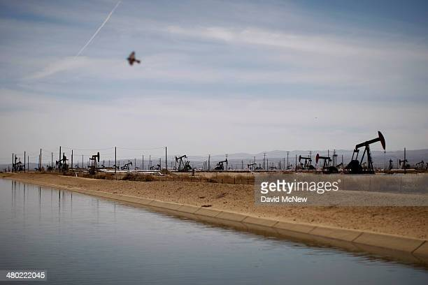 A swallows flies over a canal in an oil field over the Monterey Shale formation where gas and oil extraction using hydraulic fracturing or fracking...