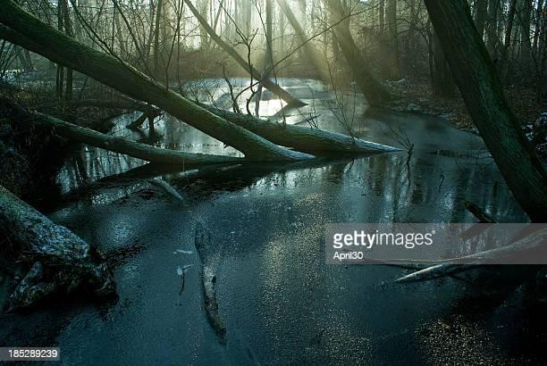 Pântano e Frost