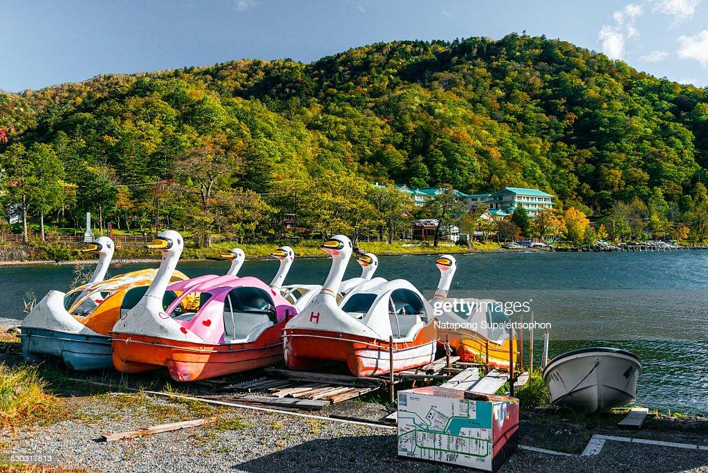 Swan Boat at Lake Chuzenji