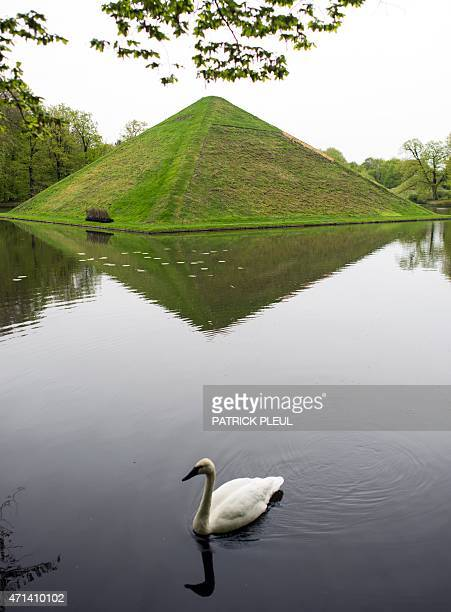 A swan swims past the 'Seepyramide' on April 28 2015 at the FuerstPuecklerPark in Branitz near Cottbus eastern Germany Count Hermann Ludwig Heinrich...