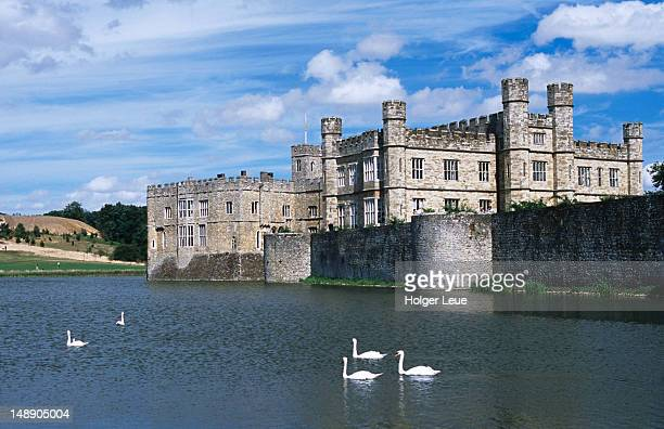 Swans on lake in front of Leeds Castle.