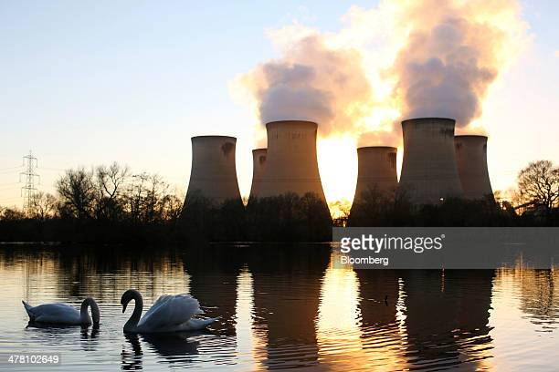 Swans swim on a lake close to Drax Power Station operated by Drax Group Plc in Selby UK on Tuesday March 11 2014 Drax Group Plc the operator of the...