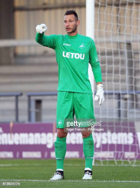 Swansea City's goalkeeper Erwin Mulder