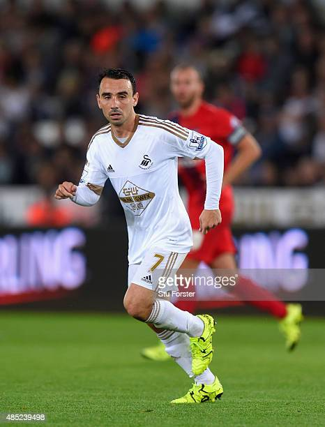 Swansea player Leon Britton in action during the Capital One Cup Second Round match between Swansea City and York City at Liberty Stadium on August...